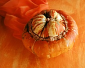 A squash (Turk's turban) on orange background