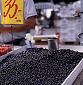 A Bin of Blueberries at the Market