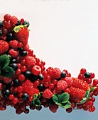 Still Life with Fresh Berries
