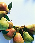 Pears in a Crescent Shape
