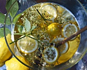 Elderflower champagne (with elderflowers and lemon slices)