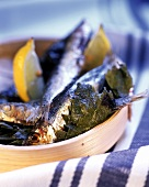 Grigliata di sarde alla turca (Sardines in vine leaves)