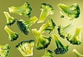 Several broccoli florets