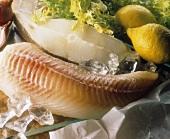 A fish fillet and a halibut cutlet