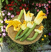 Courgettes with flowers in a basket