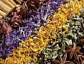Spices and dried herbs (filling the picture)