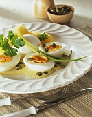 Eggs in herb and mustard cream