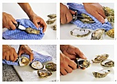 Opening oysters with oyster knife
