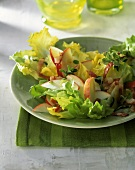 Endive salad with apples
