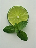 A slice of lime with mint leaves
