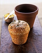Rosemary bread baked in flower pot
