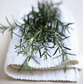 Sprigs of rosemary on a fabric napkin