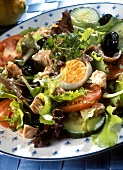 Salade Nicoise with tuna, anchovy fillets and boiled egg