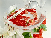 Strawberry punch with geranium flowers