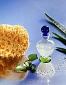 Aloesaft, frische Aloe vera und Badeschwamm