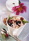 Quark cream with forest fruits and Tender Wheat