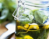Olive oil with basil and garlic in preserving jar