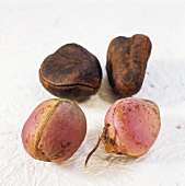 Noix de Cola (Cola nut) from Martinique, fresh and dried