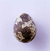 Quail's egg