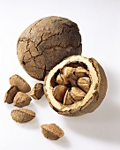 Brazil nuts, unshelled