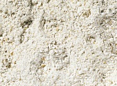 Wholemeal wheat flour (filling the picture)