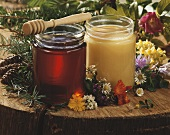 Forest and blossom honey in two jars