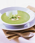 Cold pea soup with scallops and sorrel