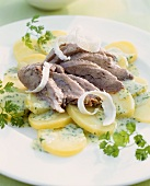 Pig's head with horseradish, chervil sauce and potatoes