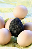 Black truffle and fresh brown eggs