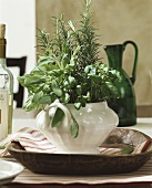 Bunch of fresh herbs as table decoration
