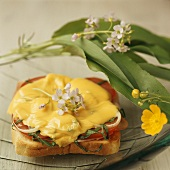 Ham and cheese on toast with ramsons (wild garlic)