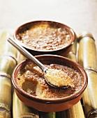 Crème brûlée made from coconut milk (Caribbean)