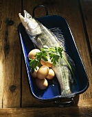 Fresh zander, eggs and parsley in roasting dish