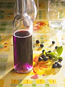Home-made blueberry wine