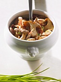 Mushroom ragout with chives