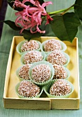 Coconut rum balls in petit four cases