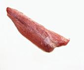 Red catfish fillet