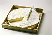 Brie de Meaux in wooden box