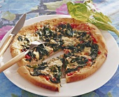 Cheese and spinach pizza