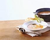 Tarhana (Suppe aus Anatolien, Türkei)