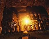 Alte Weinflaschen Chateau Mouton-Rothschild im Weinkeller