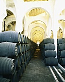 La Mezquita Winery (Jerez de la Frontera, Spain)
