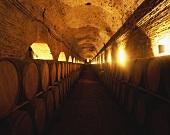Weinkeller in Maipo Valley, Santiago, Chile