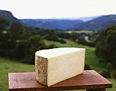 Half a hard cheese against a mountainous landscape