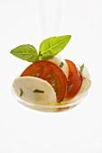 Mozzarella mit Tomaten und Basilikum auf Kelle