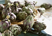 Small artichokes from Brittany, some in basket