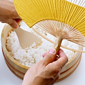 Making sushi rice (cooling with a fan)