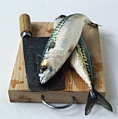 Two mackerel with cleaver on chopping board