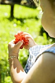 Small girl eating redcurrants in the open air