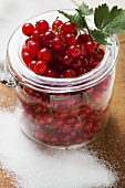Redcurrants in jam jar, sugar beside it